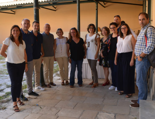 3rd TeleICCE project Meeting